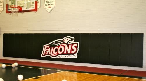 Custom Gymnasium Wall Pads